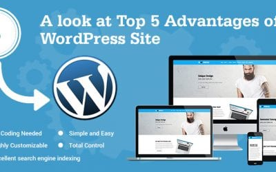 A look at Top-5-Advantages-of-a -WordPress-Site